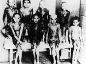 Auschwitz, Moscas