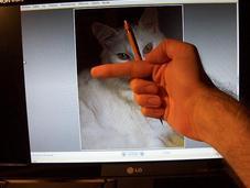 Práctica dibujo gato Drawing practice with