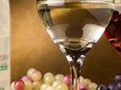 Botellas Papel Reciclado para Vino