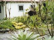 casa R.Burle Marx