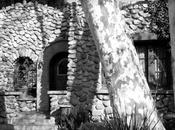 Moby estrena blog arquitectura
