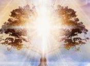 nueva humanidad conciencia