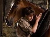 Horse (Steve Spilberg)