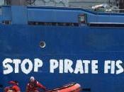 Piratas, pesca ilegal