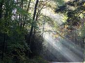 Southeast parte, Great Smoky Mountains Blue Ridge Parkway