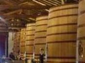 Rutas vino, enoturístimo atracción territorio gran elemento tener cuenta.