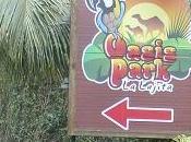 Oasis Park, Jugando Naturaleza