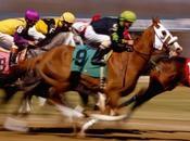 Insólito: canceló Luck mueren caballos