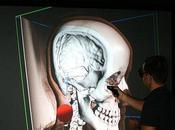 nuevas paredes virtuales permiten diseccionar cerebro