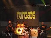 """grupo rock """"Txingaos"""" salta panorama musical español"""