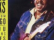 Lonnie brooks bayou lightning strikes live from chicago (1988)