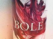 Borsao bole. 2008: buen vino, precio mejor foto