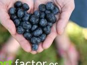 Cuida corazón estos alimentos